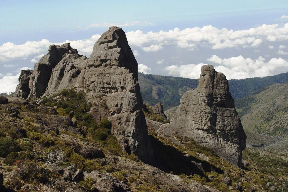 Parque Nacional Chiripo