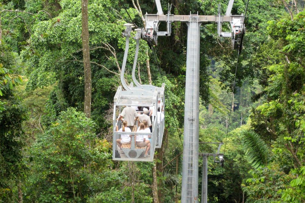 Bosque Lluvioso Veragua