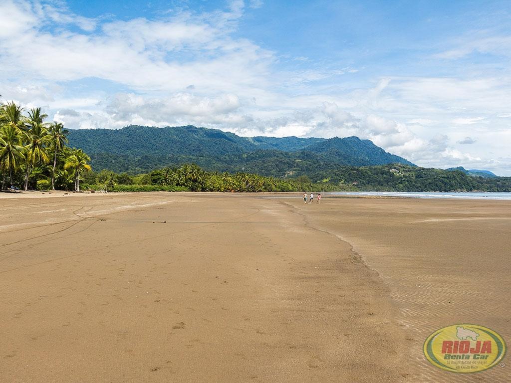 Pacifico Sur: Uvita Costa Rica