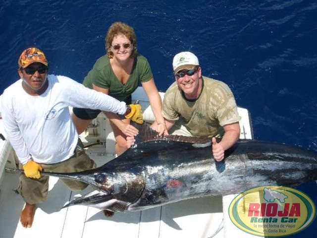 Donde podemos Encontrar una Buena Pesca?
